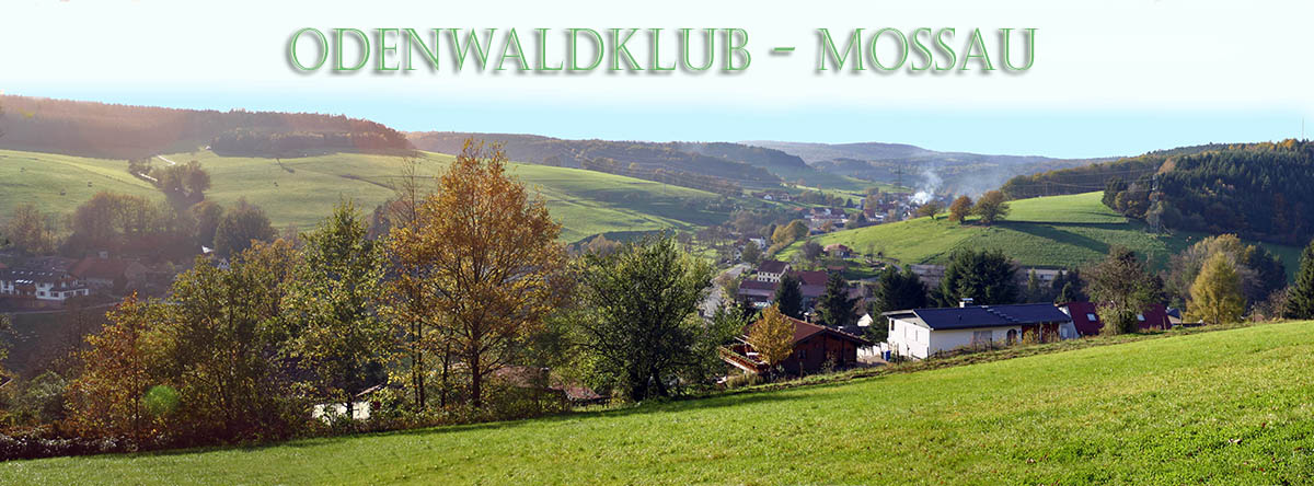 Odenwaldklub - Mossau